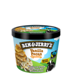 Ben & Jerry's Vanilla Pecan 100ml